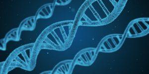 DNA Testing Nutrigenomics